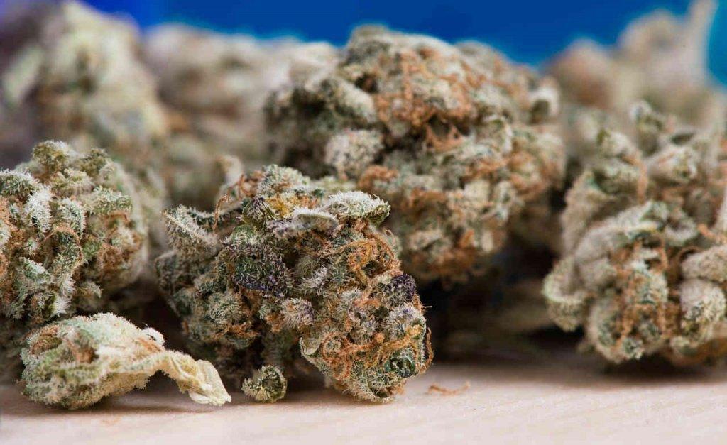 photo of marijuana